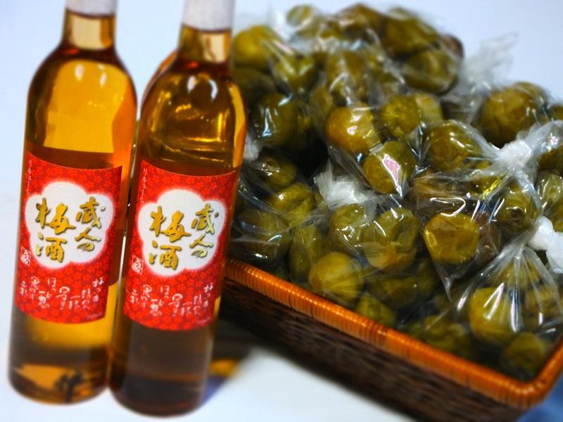 大洋 梅の実 梅酒