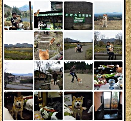 コルクボード・九州旅行4