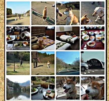 コルクボード・九州旅行3