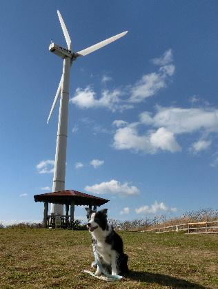 150101風車2