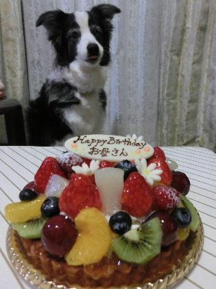 150227ケーキ