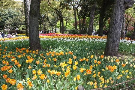 150418 k横浜公園4