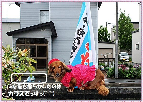 IMG_6659.jpg