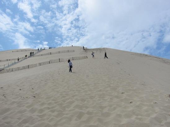 ピラ砂丘 1