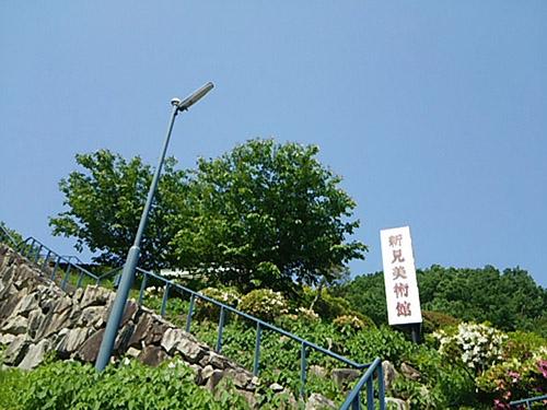 DSC_1523niimi.jpg