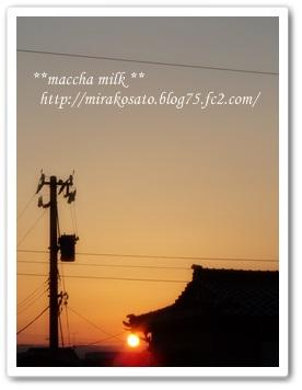 t05DSC01263.jpg