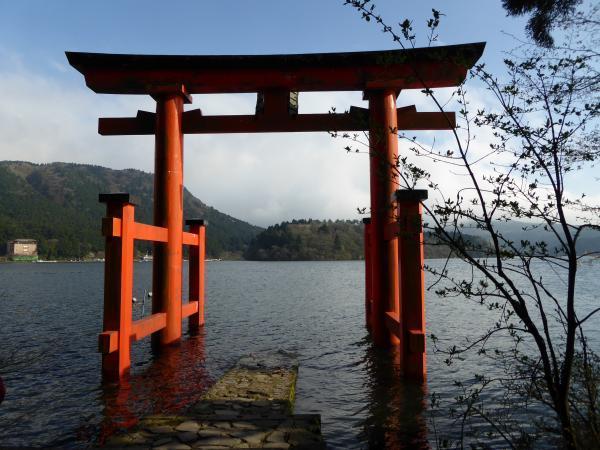 箱根神社鳥居