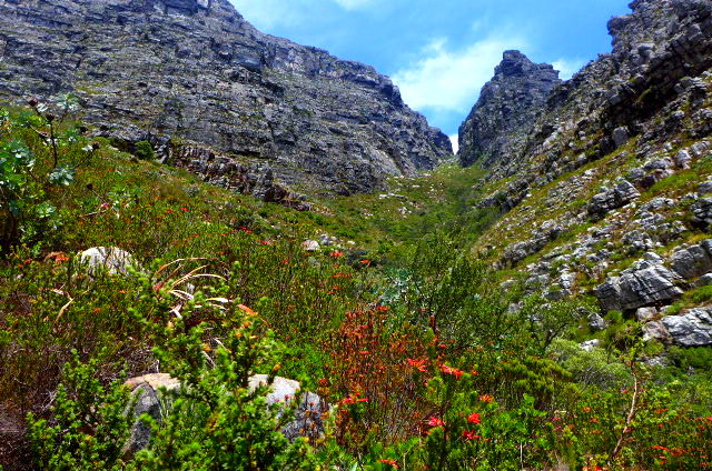 TableMountain_Hike_03.jpg