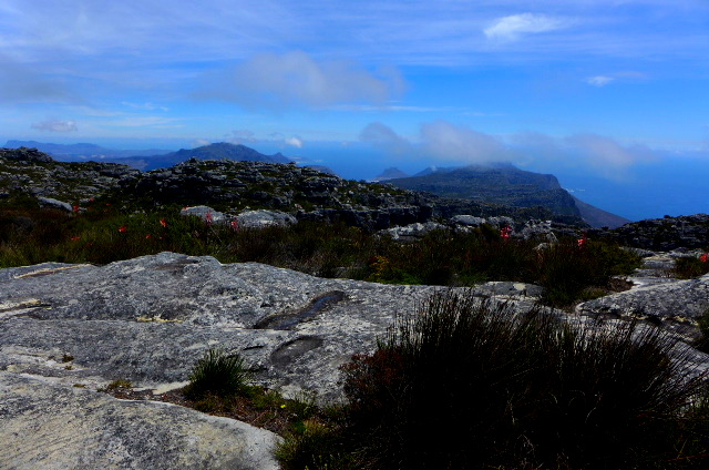 TableMountain_Hike_05.jpg