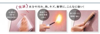 0252_takaraSO_0008.jpg