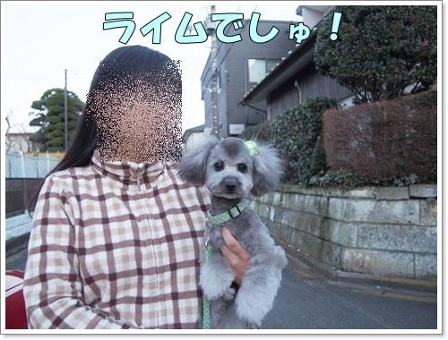 20141223_006.jpg