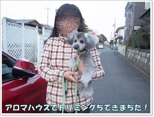 20141223_009.jpg