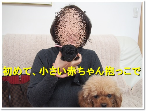 20150116_070.jpg