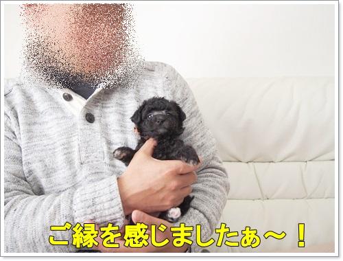 20150131_099.jpg