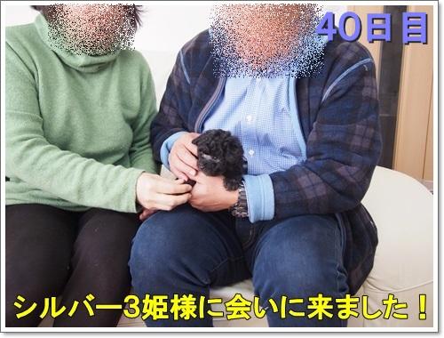 20150202_007.jpg