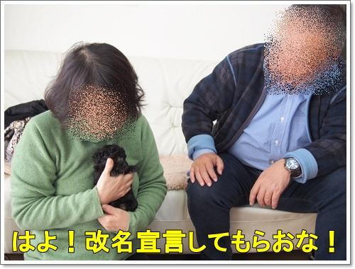 20150202_026.jpg