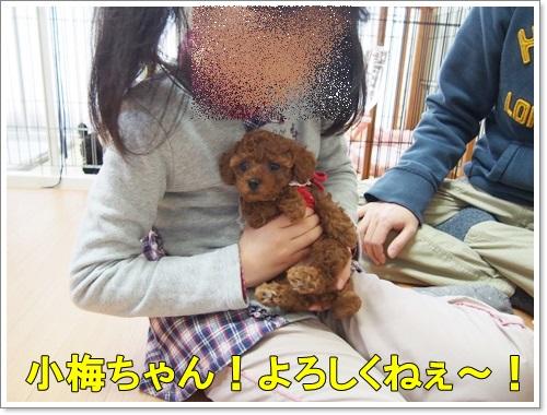 20150222_107.jpg