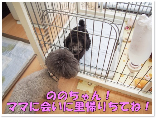 20150314_010.jpg