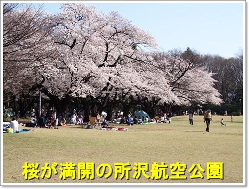 20150331_016.jpg