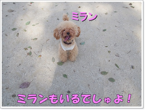 20150331_030.jpg