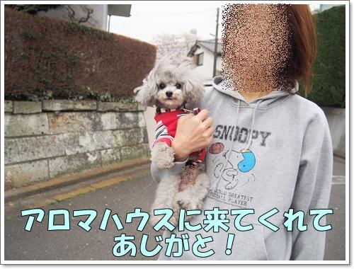 20150401_024.jpg