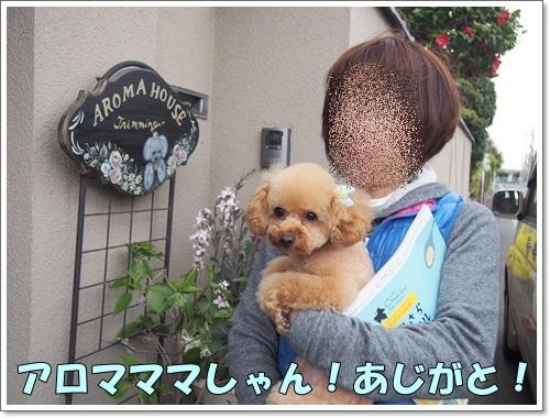 20150403_073.jpg