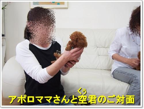 20150510_053.jpg