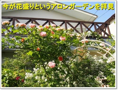 20150511_075.jpg