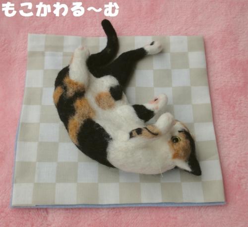遊んで三毛猫3