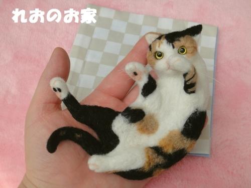 遊んで三毛猫5