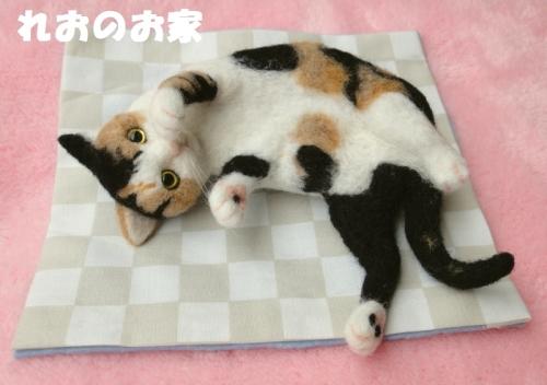 遊んで三毛猫1