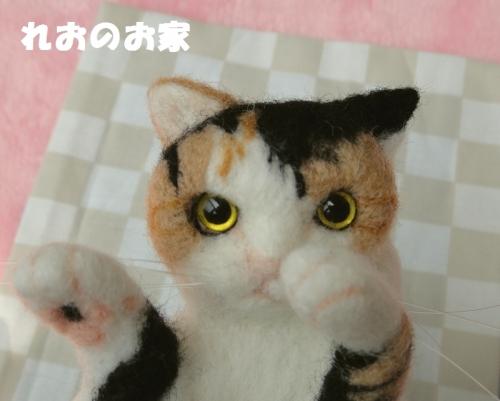 遊んで三毛猫4