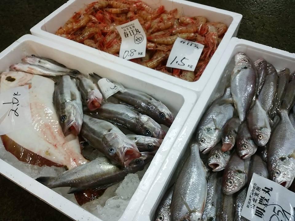 ヤナギガレイ 地魚 魚 新潟