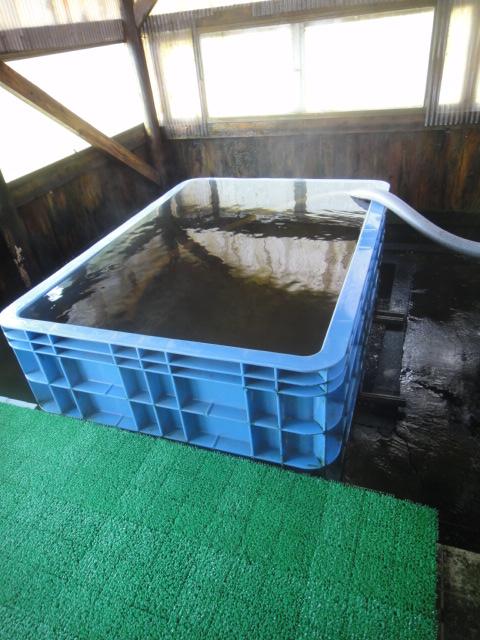 素晴らしい浴舎