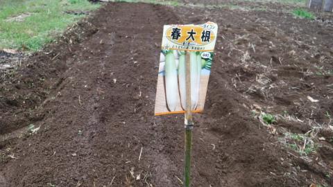 2017.3.25開墾地11