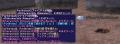 大事の忘れ形見CL135 敗戦・・.png