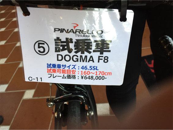 pina-f8.jpg