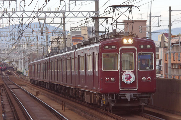 150311kamishinjo2313F-3.jpg