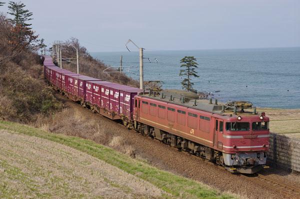 150322kosagawa-kamihama2093.jpg
