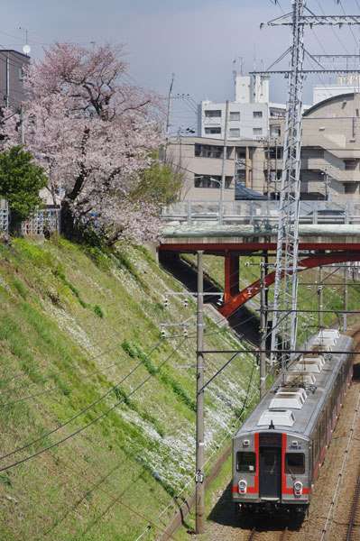 150402ishikawadai-seizokuik.jpg