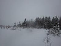 フィンランド宿16