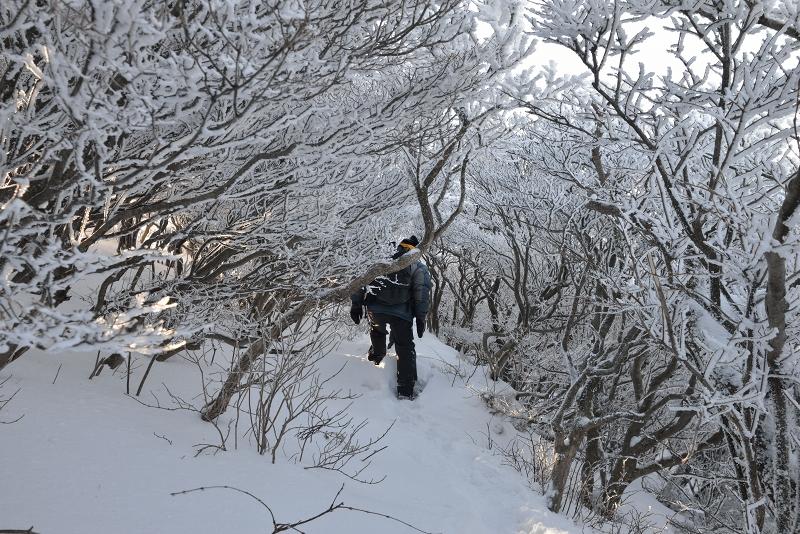 大船山 (47)