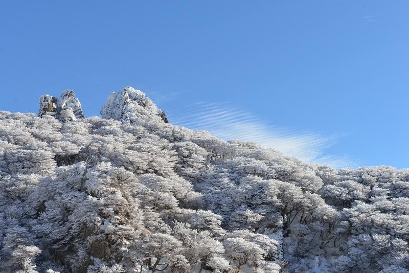 大船山 (71)