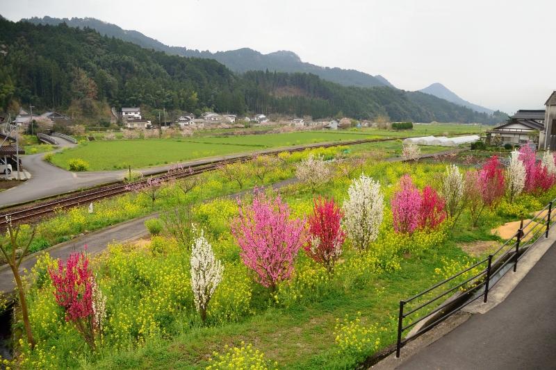 日田彦山線 (1)