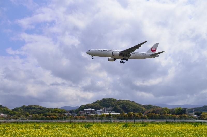 福岡空港 (6)