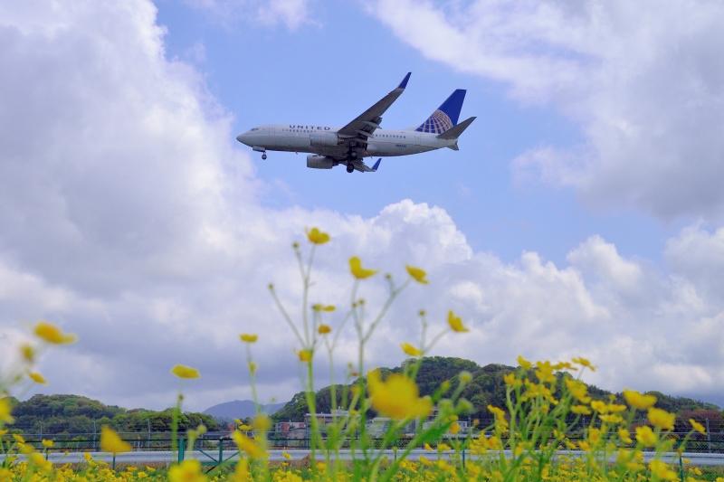 福岡空港 (10)