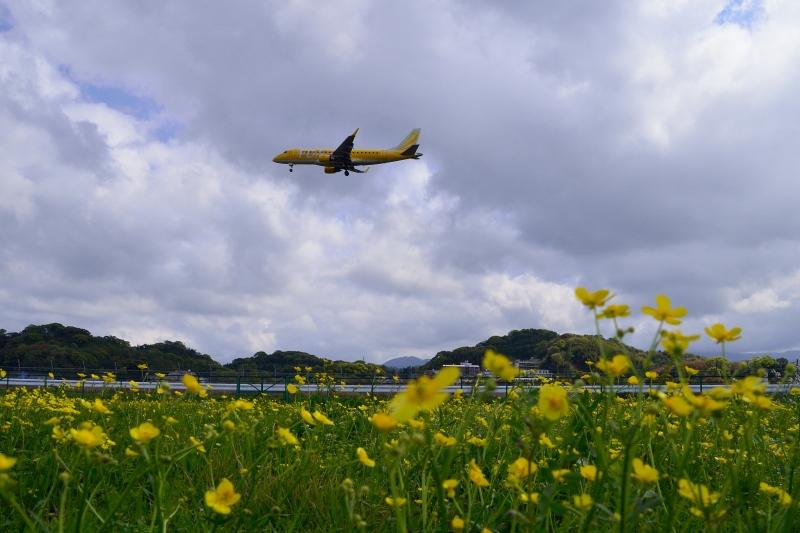 福岡空港 (8)