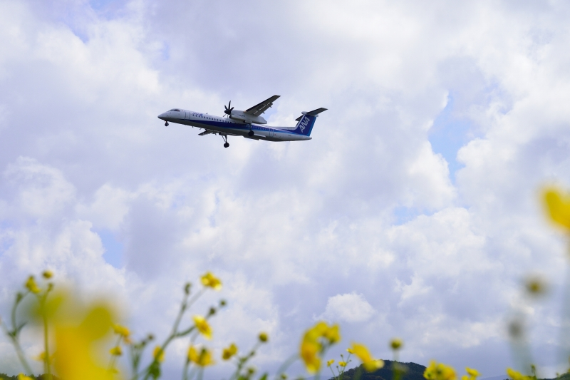 福岡空港 (16)