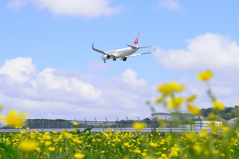 福岡空港 (17)