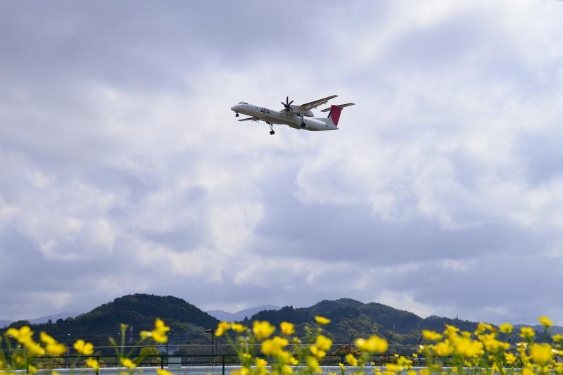 福岡空港 (15)